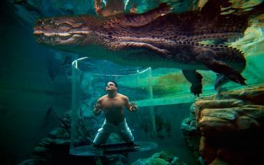 Cage of Death, siente lo que es nadar con reptiles