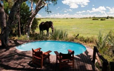 Mombo Camp, un oasis de hospitalidad en África