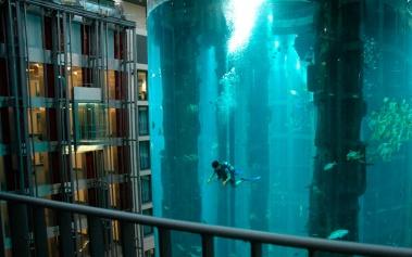 Radisson Blu Berlin, un hotel con acuario propio