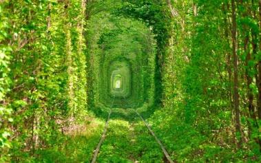 Tunel del Amor: el lugar más romántico del planeta