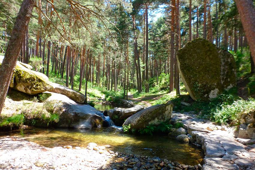 10 senderos españoles para visitar esta primavera