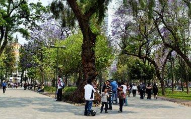 5 espacios naturales en Ciudad de México