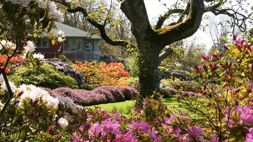 Los jardines m s rom nticos del mundo rock the traveller for Jardines romanticos