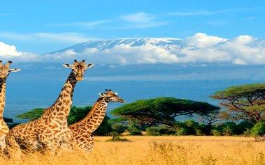 5 países de África que debes recorrer