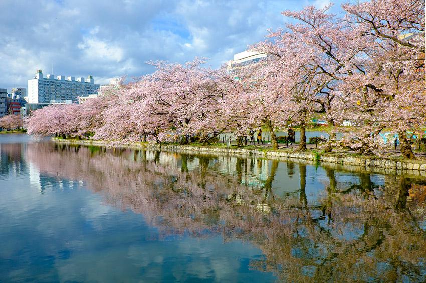 7 lugares de color rosa en el mundo