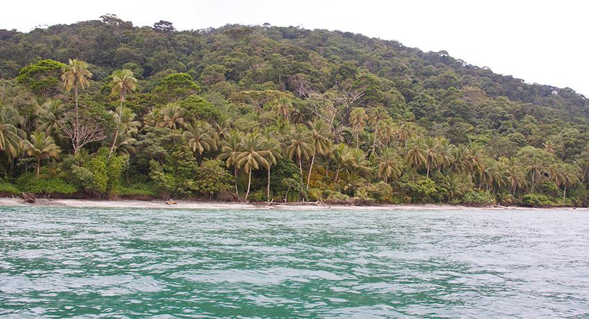 Descubre la Isla Gorgona, un paraíso en Colombia