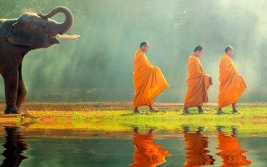 Las mejores experiencias de Asia que puedes vivir durante tu viaje
