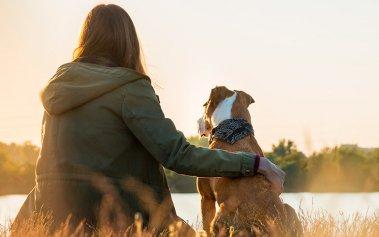 Viaja con tu perro: los mejores lugares para tu mascota