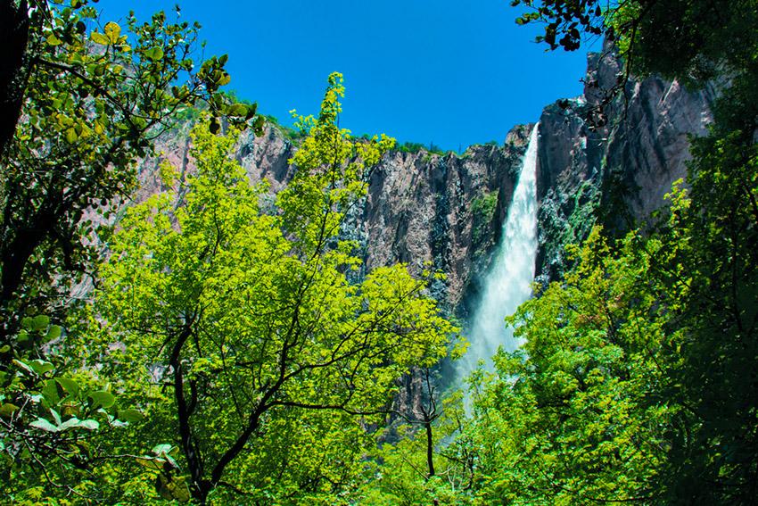 Descubre estas cascadas de México envueltas de naturaleza