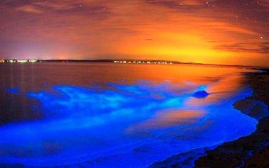 La bioluminiscencia de Puerto Escondido