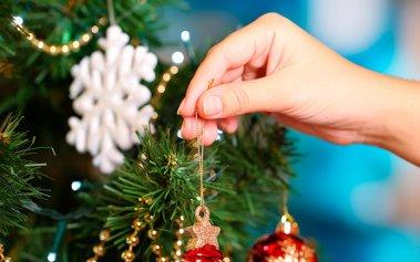 Lugares donde puedes comprar tu árbol de Navidad natural