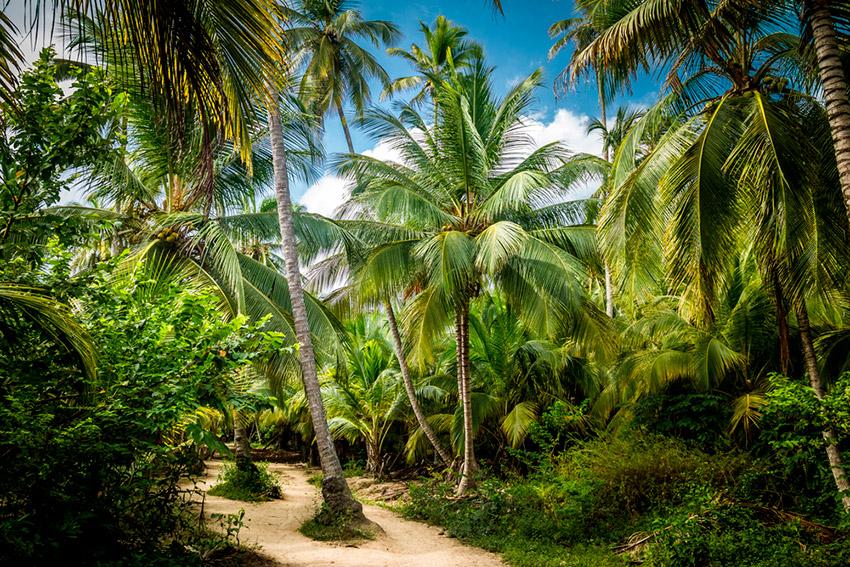Tayrona, uno de los destinos en Latinoamérica antes de los 30