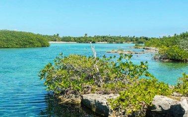 La Caleta Yal Kú: un paraíso de la Riviera Maya