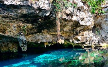 Cenotes Ocultos cerca de Tulum: el Gran Cenote