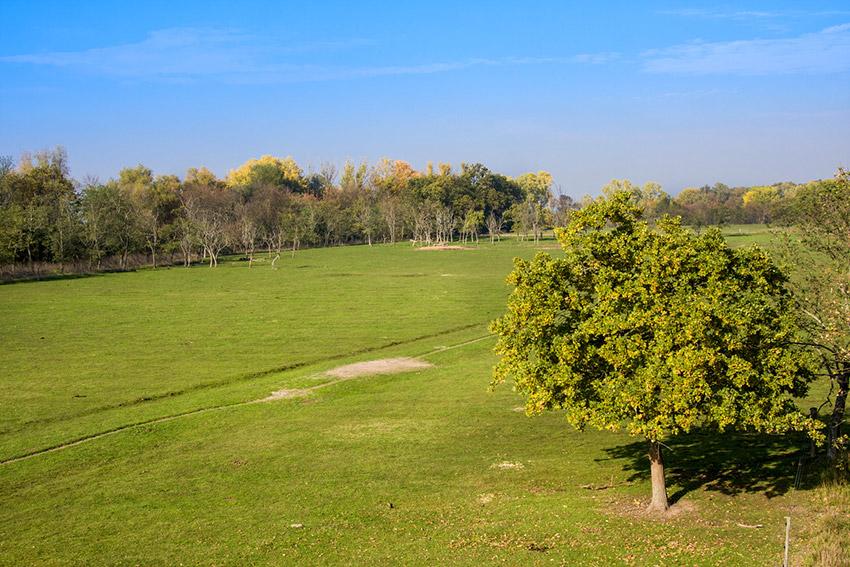 Hortobágy, uno de los lugares dónde viajar en primavera