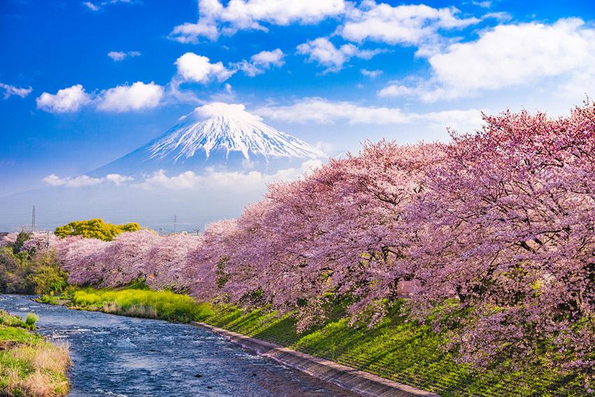 Monte Fuji, uno de los lugares dónde viajar en primavera