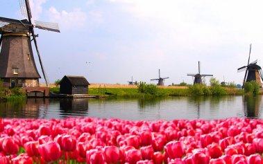 ¿Dónde viajar en primavera? ¡Conoce estos destinos!