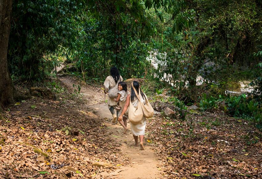 Pueblo indígena de Colombia, uno de los lugares donde existe una de las lenguas del mundo a punto de desaparecer