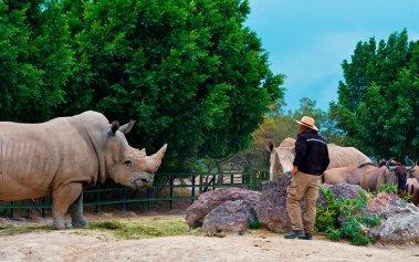 Naturaleza salvaje en México: 5 safaris increíbles