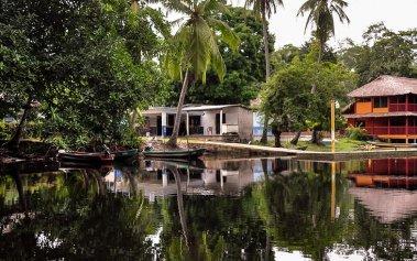 """Selvas húmedas en México: La Reserva de la Biosfera """"La Encrucijada"""""""