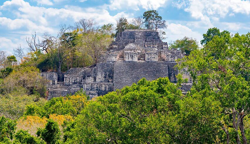 Selvas húmedas en México: la Reserva de la Biosfera de Calakmul