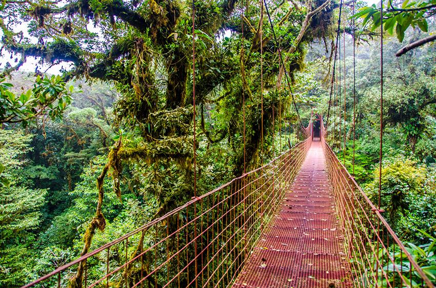 Monteverde, uno de los destinos donde experimentar deportes de riesgo