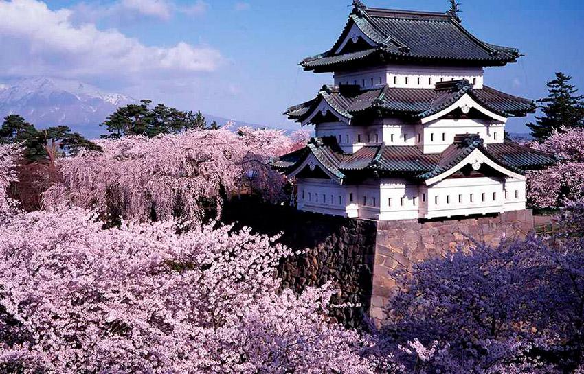 Hirosaki Park, uno de los lugares para observar el Hanami