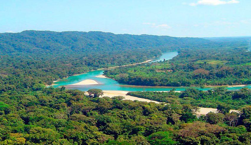 Selvas húmedas en México: la Selva Lacandona