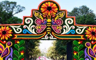 Descubre el Festival de Flores de Chapultepec