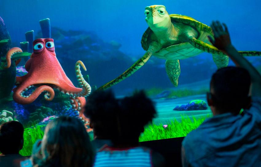El gran acuario, uno de los secretos de Disney World