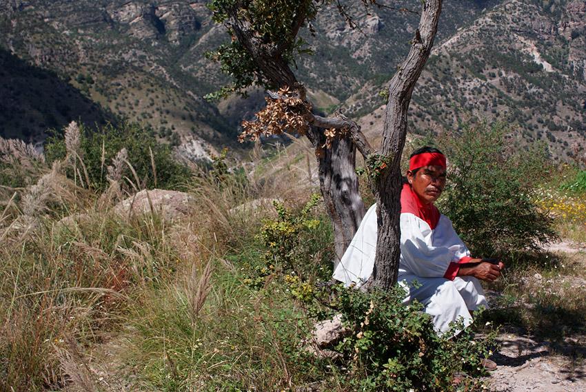 Barrancas del Cobre, uno de los lugares de la naturaleza salvaje en México