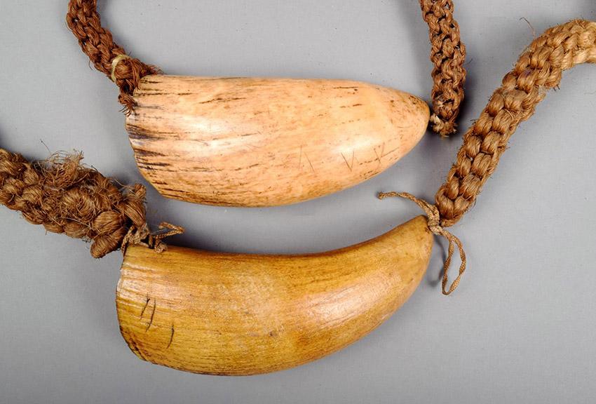 El Tabua, una de las cosas qué hacer en Fiji