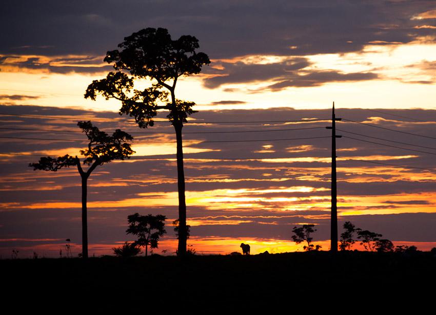 Sin electricidad, uno de los consejos para recorrer el Amazonas