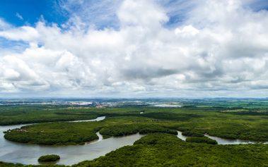 ¡Sigue estos consejos para recorrer el Amazonas y disfruta de la aventura!