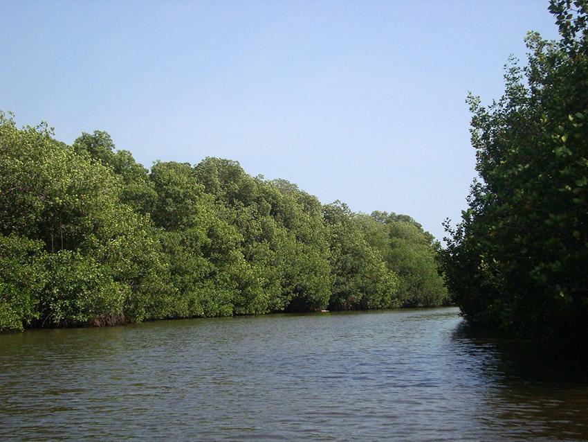 Laguna Pozuelos, uno de los lugares en la costa de Chiapas