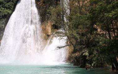 Naturaleza salvaje en México: Huasteca Potosina