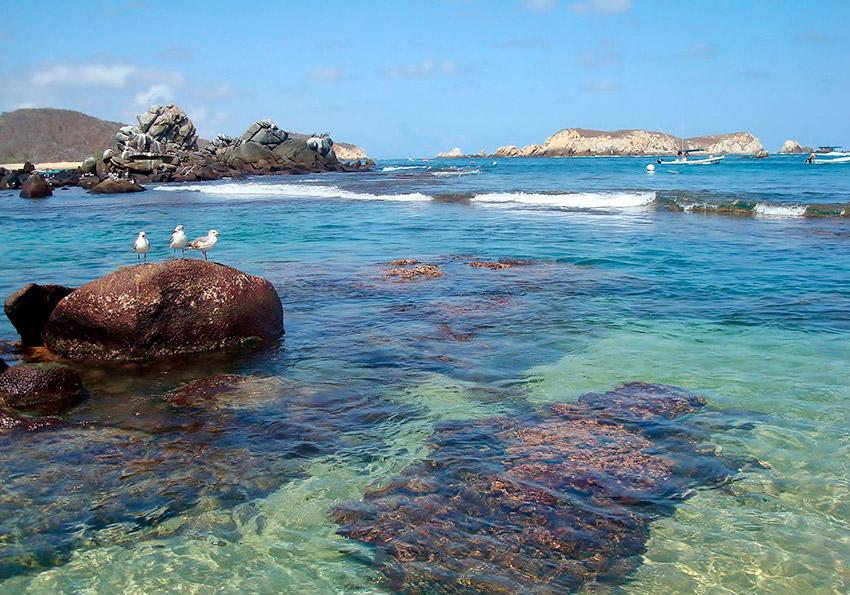 Bahía de San Agustín, una de las mejores bahías de Oaxaca
