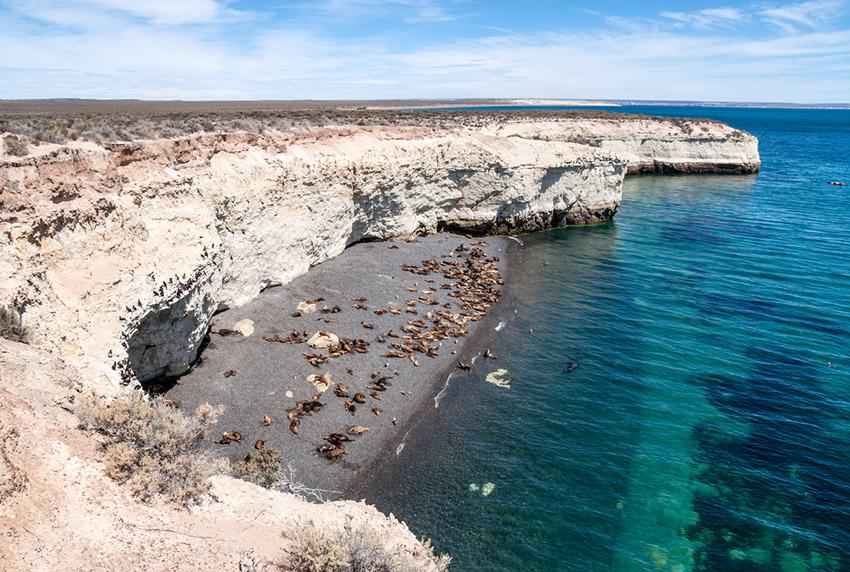 Puerto Madryn, uno de los lugares donde viajar en invierno en Argentina