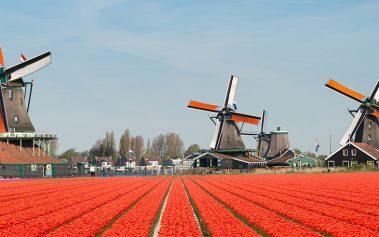 8 sitios secretos en Ámsterdam para descubrir en tu viaje