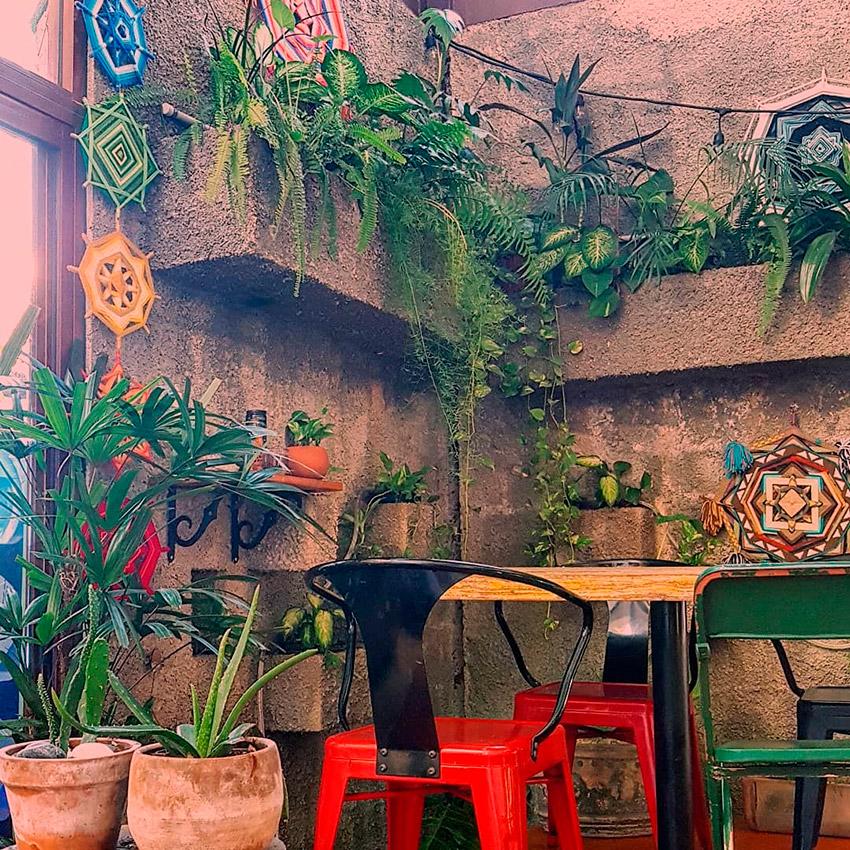 Chou Chou Café, uno de los cafés de moda