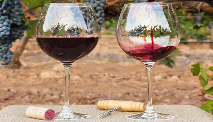 Los países con el mejor vino del mundo