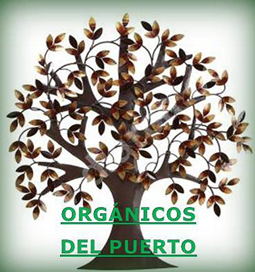 Orgánicos del Puerto, uno de los lugares de la ruta vegana en Puerto Vallarta
